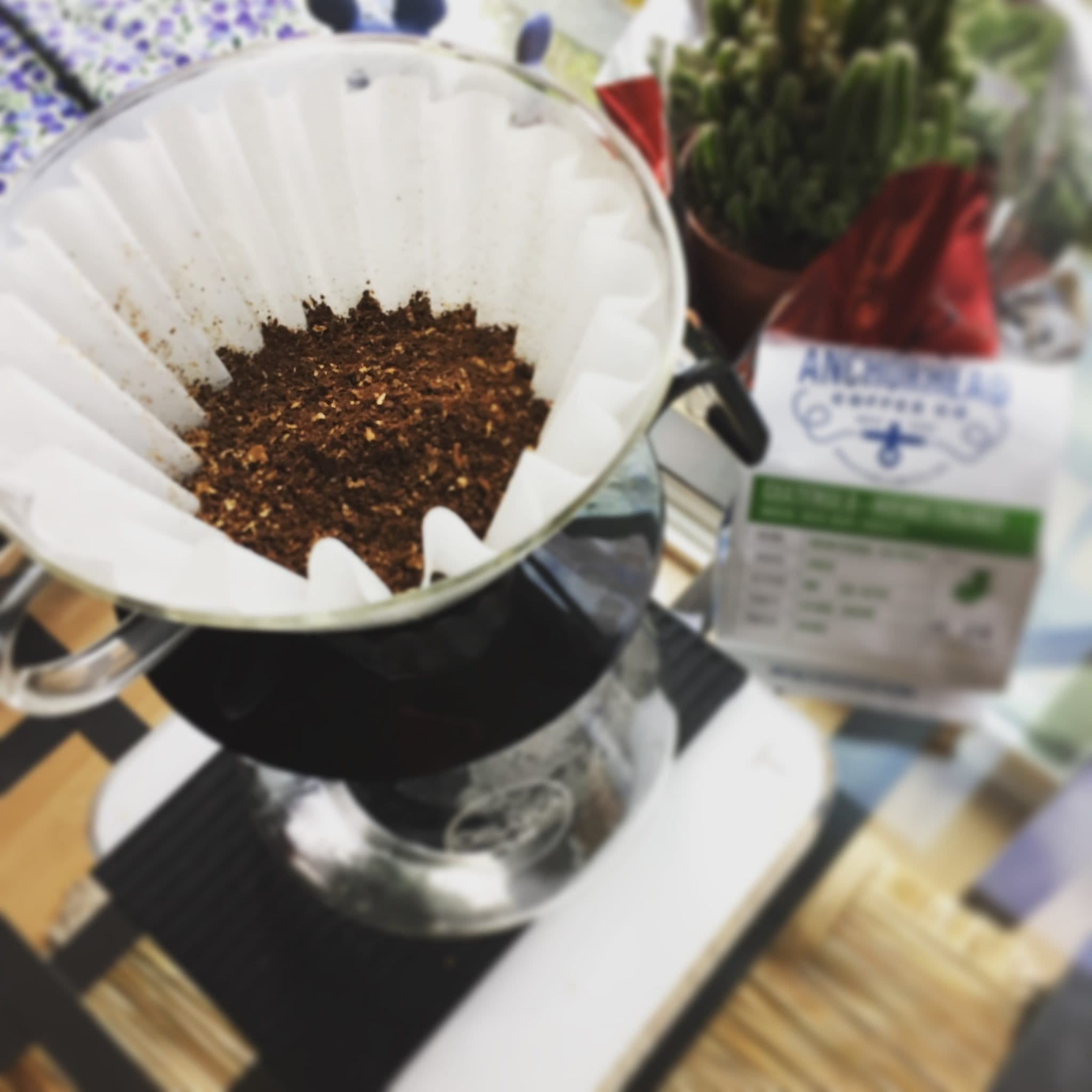Kalita Wave Brewing on an Acaia Scale