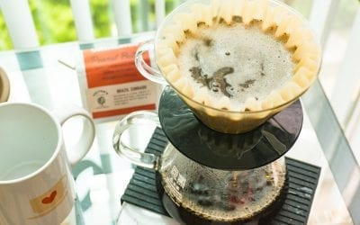 How to Brew Kalita Wave – The Coffee Lovers Definitive Guide